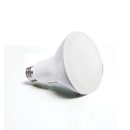 LED Lighting, Retrofit LED Lamps, OLED, Violet Chip
